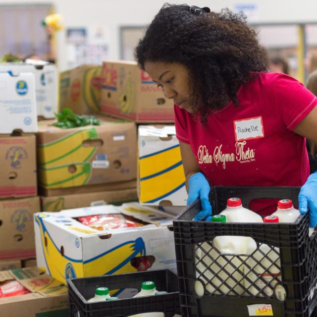 A student helps sort food at a local food bank