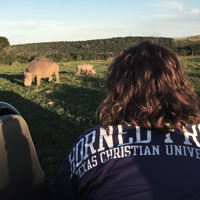 A student looks at a rhino